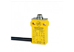 Limit Switch Serie FCT